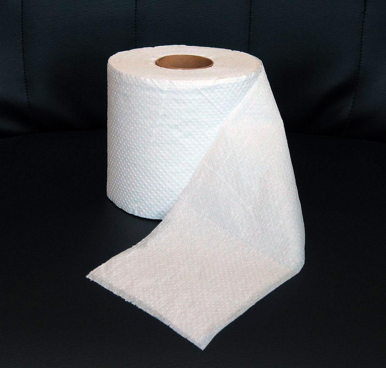 un mundo desde el abismo papel higi nico accesorio vital